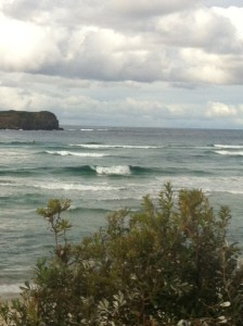 They're too small to see, but there were dolphins surfing these waives alongside startled kayakers.