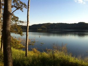 If you get sick of salt water there is always Lake Boonah, up in the hinterland.
