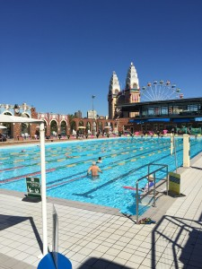 North Sydney Olympic Pool. My new favourite place for lapping. Location location location.