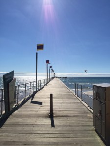 I paid a visit to Frankston on  my way to giving a school talk about 'Shy: a memoir'. Stunning afternoon.