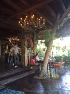This tree had pride of place at La Laguna bar in Canggu.