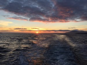 Sun doesn't really go down in Iceland in summer. This is coming home from midnight whale-watching. When can i go back?