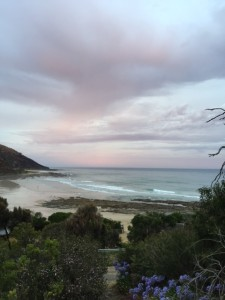 The view from the balcony of the lovely old house i stayed in at Wye River.